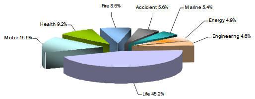 Egyptian Insurance Market Ranking Of Insurance Companies